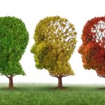 همه چیز درباره بیماری فراموشی/ منشأ آلزایمر در مغز انسان کشف شد